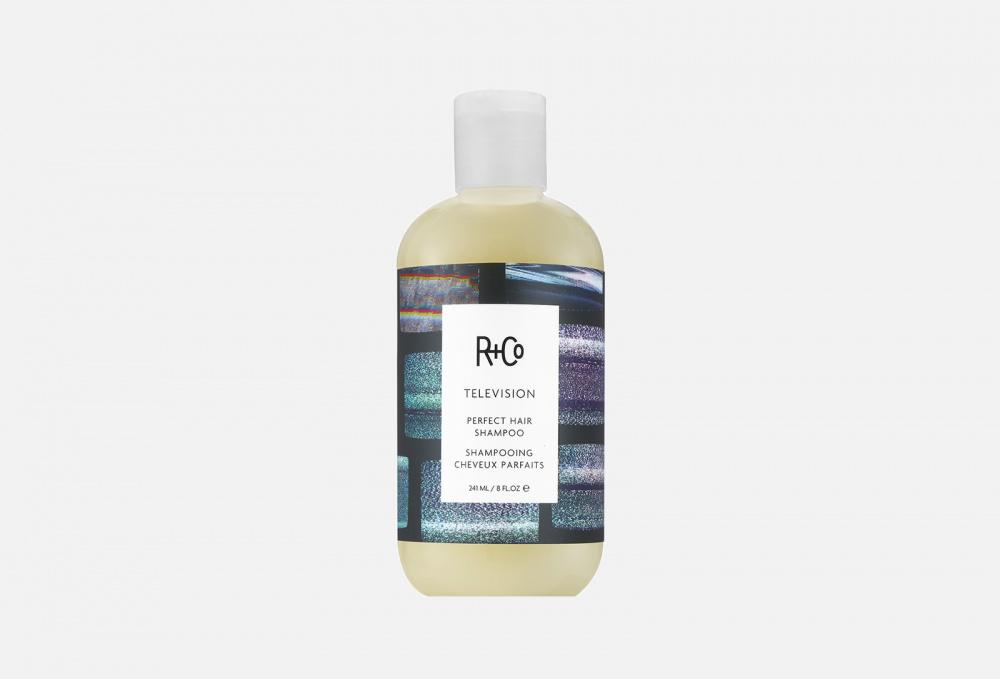 Фото - Шампунь для совершенства волос R+CO Television Perfect Hair Shampoo 241 мл joyce r perfect
