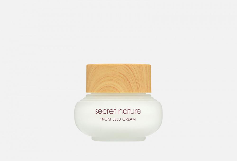 Фото - Крем увлажняющий SECRET NATURE From Jeju Cream С Экстрактом Зелёного Чая 50 мл secret nature from jeju serum
