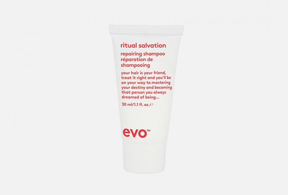 Купить Шампунь для окрашенных волос (мини-формат), EVO